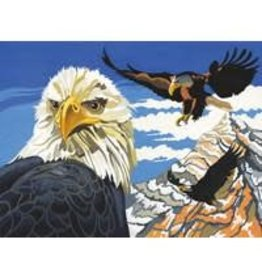 Reeves Eagles Paint By Number