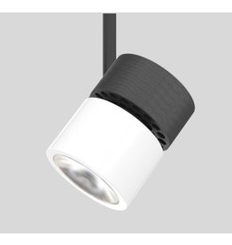 Arancia Mini spot light