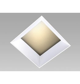 Specialty Lighting 4 inch Regressed Square Trimless Adjustable Downlight