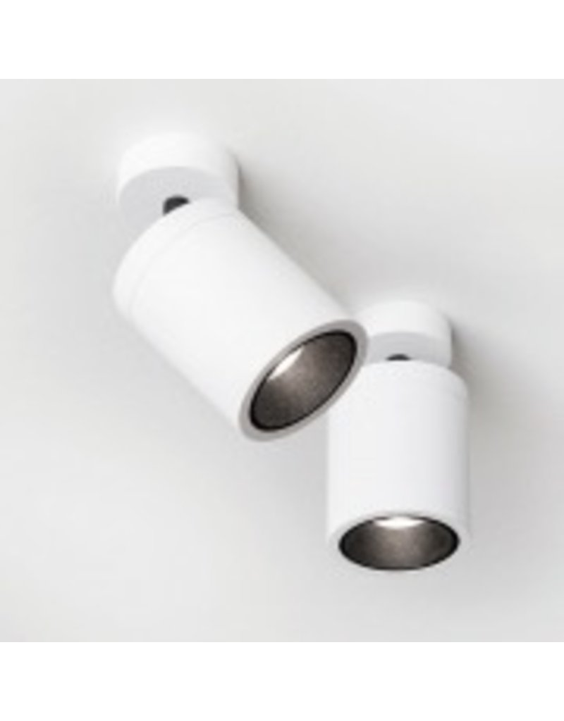 Delta Light Round adjustable ceiling mounted light