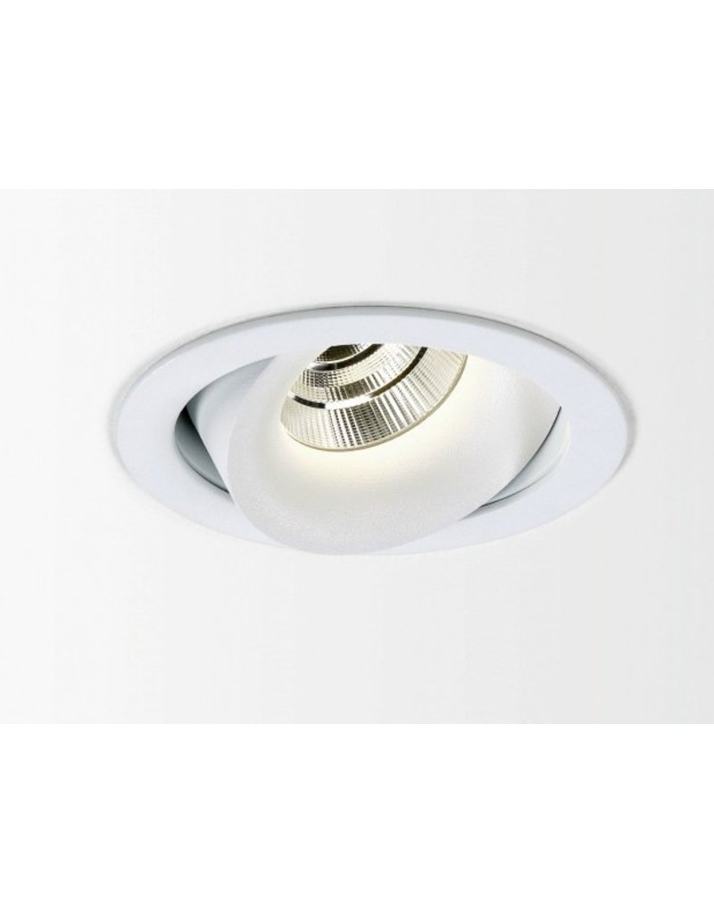 Delta Light Reo LED Round Recessed Adjustable Gimbal