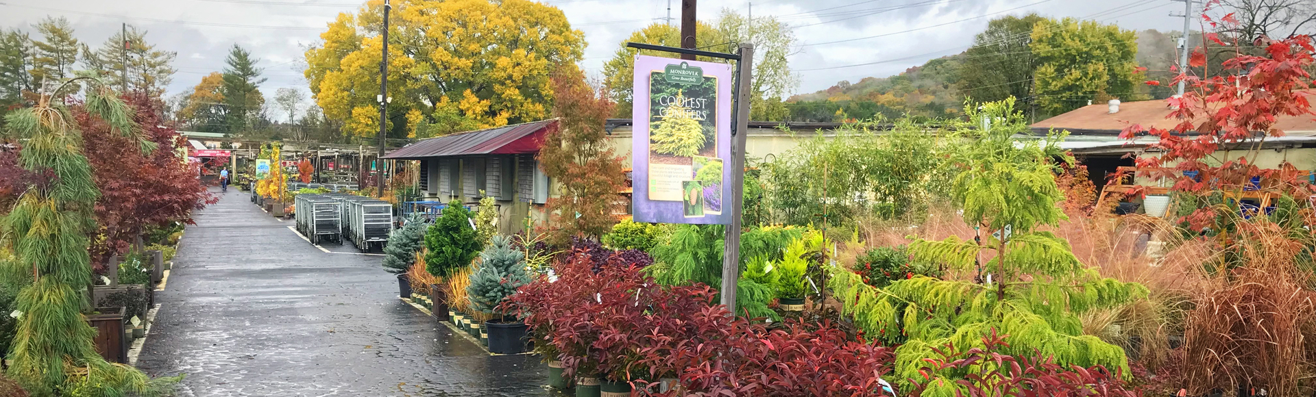 Bates Nursery & Garden Center