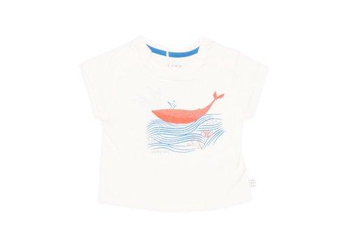 Carrément Beau T-Shirt Carrément Beau