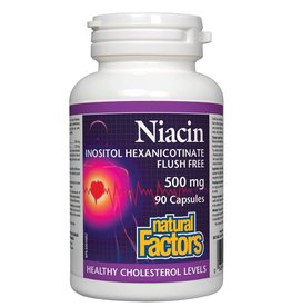 Natural Factors Niacin Flush Free 500 mg 90 caps