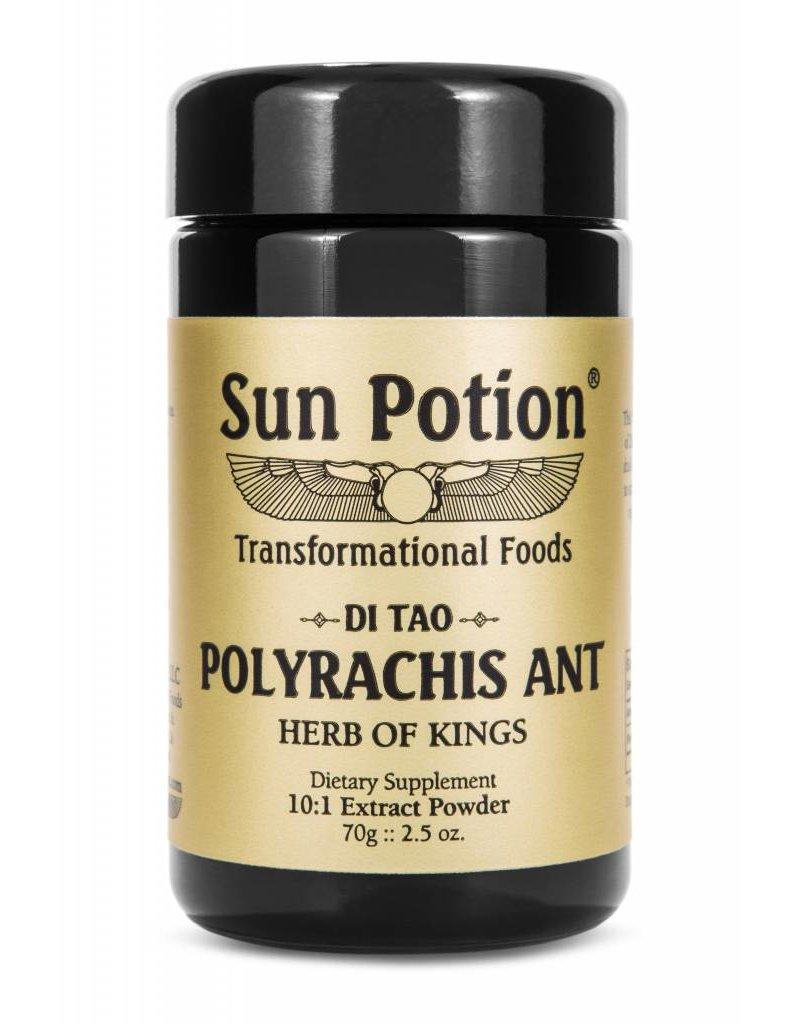 Sun Potion Polyrachis Ant 10:1 Extract Powder 70g ...