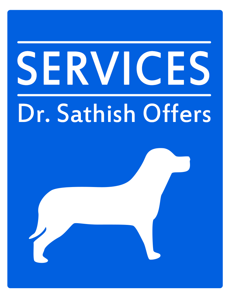 Holistic Vet Services We Offer
