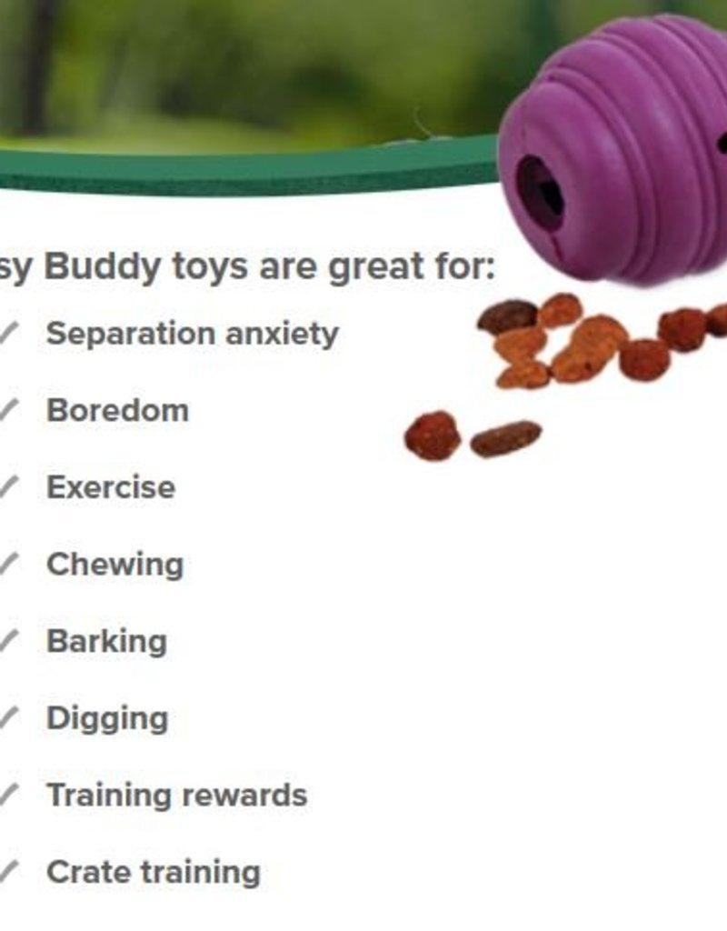 PETSAFE Busy Buddy Squirrel Dude