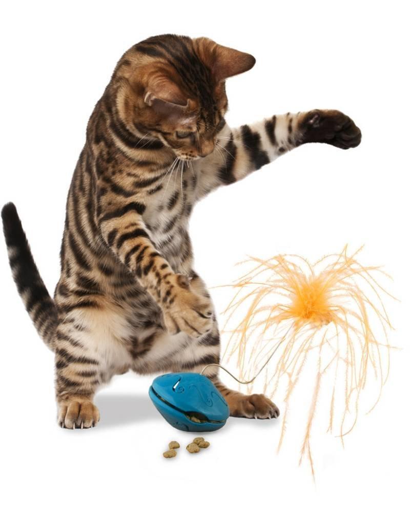 PETSAFE Busy Buddy Cat Twist n' Treat Teaser