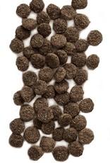EARTHBORN Earthborn Venture Turkey Meal & Butternut Squash Dog Food