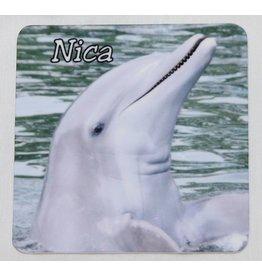 Souvenirs Nica Magnet