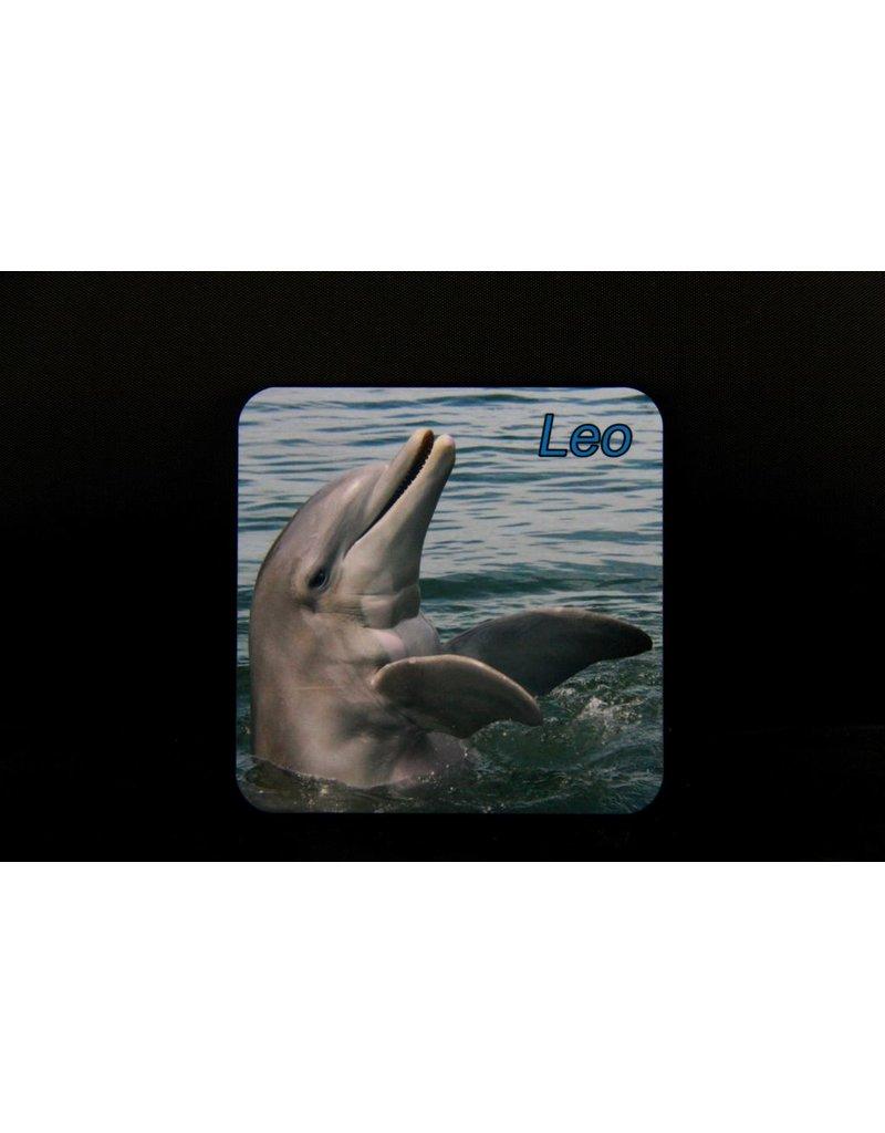 Souvenirs Leo Magnet