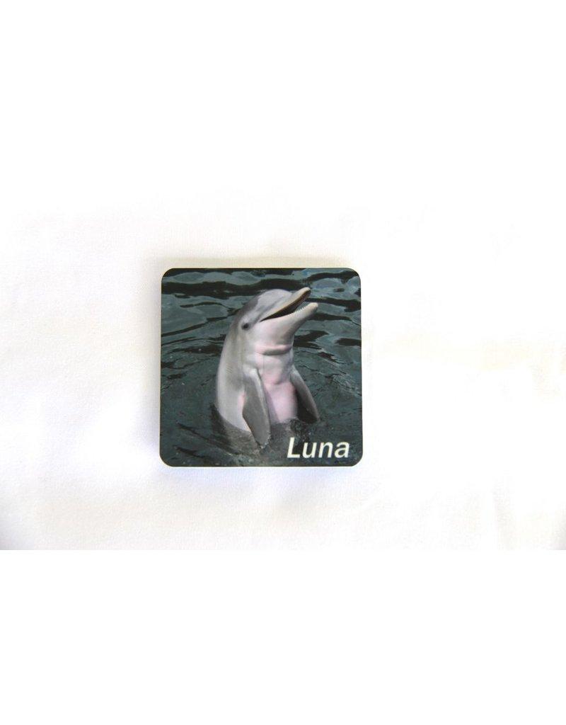 Souvenirs Luna Magnet