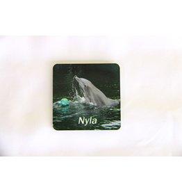 Souvenirs Nyla Magnet