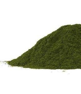 Wheatgrass, powder 1lb