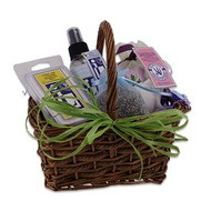 Lavender Mini Sampler Basket