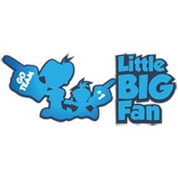 littleBIGfan