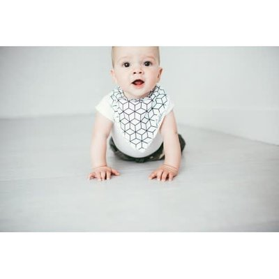 Copper Pearl baby bandana bibs - wild
