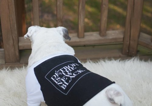 DITNB. Détroit is the New Black Dog Shirt