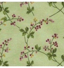 American Beauty Wild Rose 7891-G