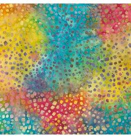 Tonga B4551-Rainbow