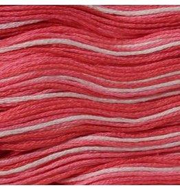 Presencia Embroidery Floss Variegated-9350 Geranium