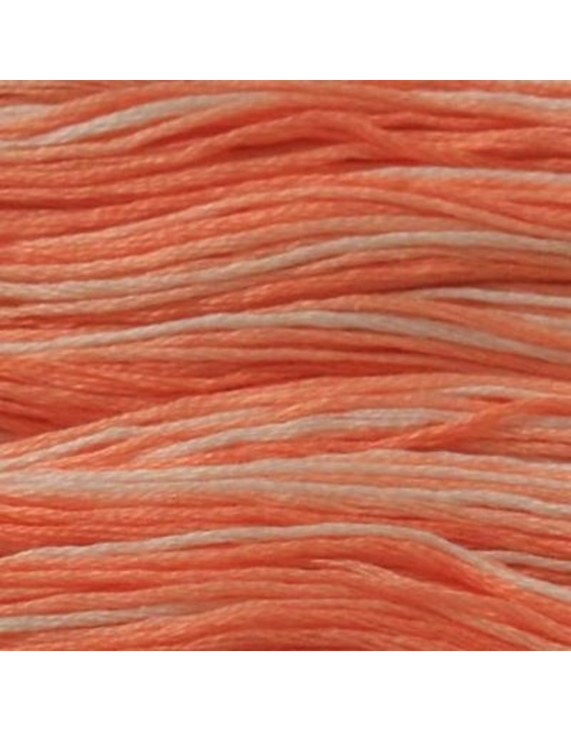Presencia Embroidery Floss Variegated-9175 Fresh Salmon