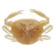 Berkley fishing Berkley gulp softbait 2 inch paddle crab Amber glow