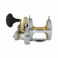 Shimano fishing Shimano Talica 20 2 speed  fishing reel