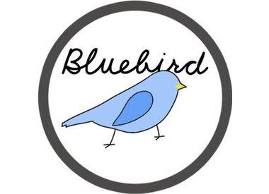 Blue Bird Liquids