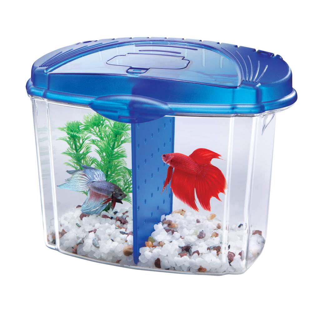 Aqueon Aqueon Mini Bow Betta Starter Kit Blue