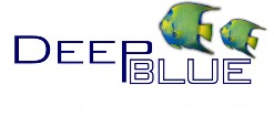 "Deep Blue Deep Blue Bonded Filter Pad 24x15"""