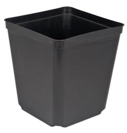 McConkey S55-1 5.5in Square one Black Pot 264/cs