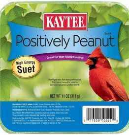 Kaytee Positively Peanut High Energy Suet 12ea/11oz