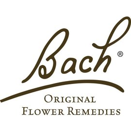 Bach Rock Water 20mL