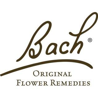Bach Wild Rose 20mL