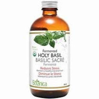 Botanica Holy Basil (fermented) 250ml