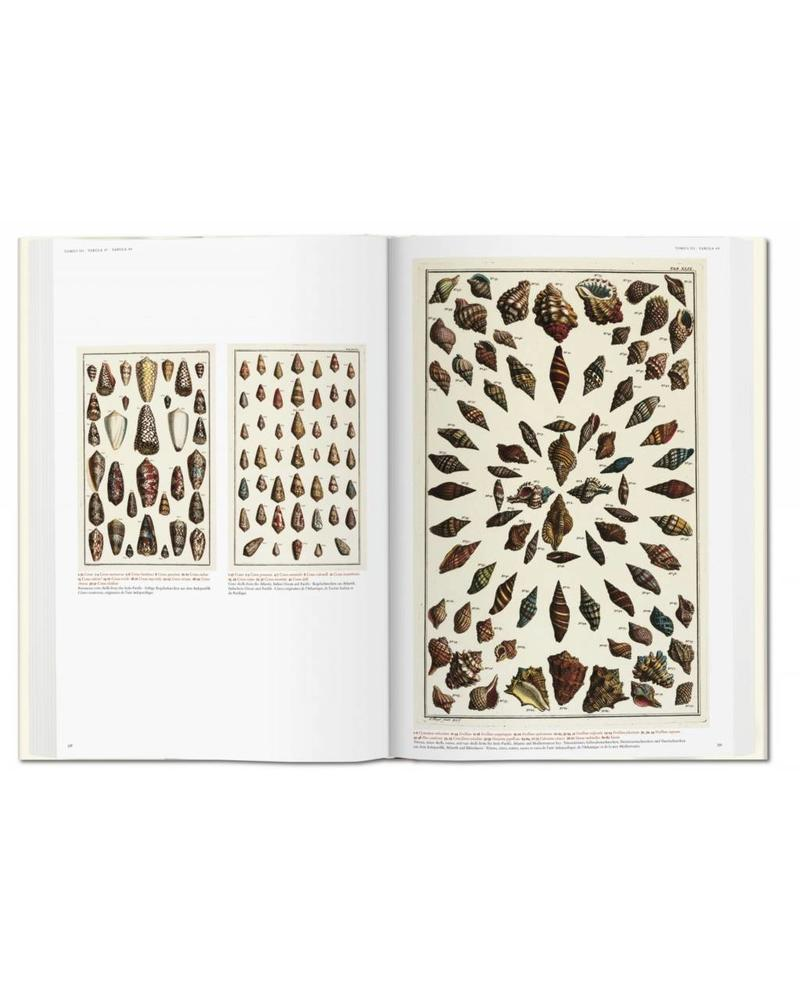 ... Albertus Seba: Cabinet Of Natural Curiosities (Oversized Coffee Table  Book)