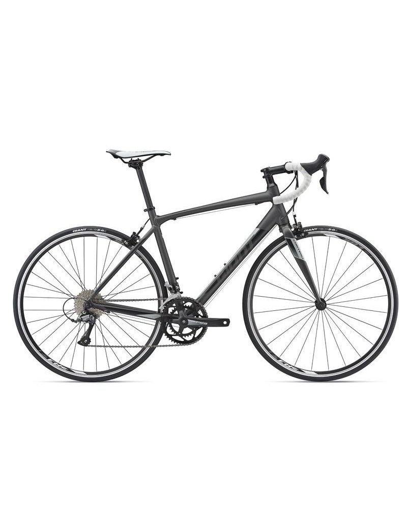 Giant Contend 3 2018