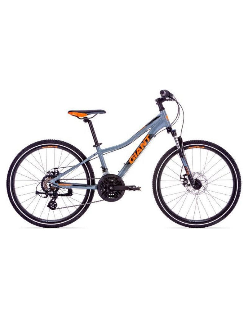 Giant Giant XTC Jr 1 Disc 24 Gray 2019