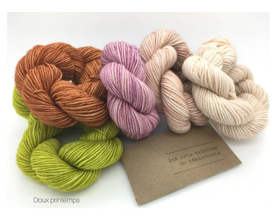 Les arts textiles du Témiscouata Kit Plump Sock Doux printemps