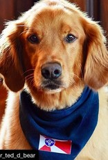 The Workroom Wichita Flag Dog Scarf
