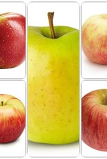 Apple SD - 5 Way Combination Pre-Order
