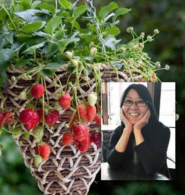 "May 20th, Plant a Hanging Strawberry Basket followed by… ""Simple Berry Sauces & Deserts"" with Kathy Rossol"