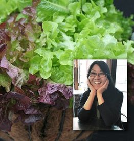 "June 3rd, Hanging Lettuce Baskets & Kathy Rossol ""Beyond Lettuce"""