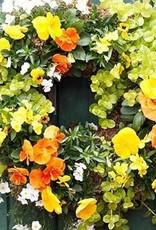September 30th, Create a Fall Living Wreath