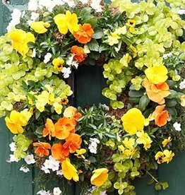September 30th, Create a Fall Living Wreath
