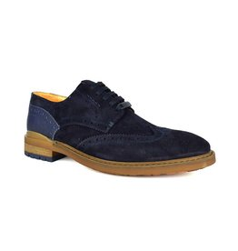 Ambitious Gusto Suede Leather Shoes | Navy
