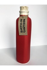 Earth-In 4 Corners 24oz Water Bottle-Matte Red