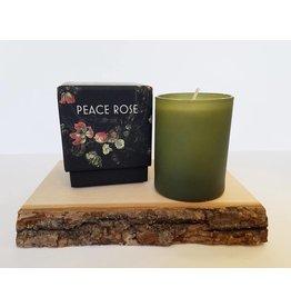 Tatine Peace Rose