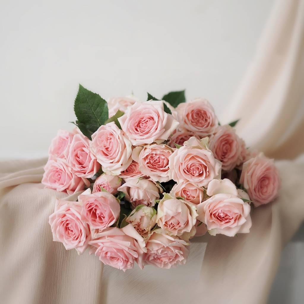 Long Stem Single Roselight Pink Dear Arrangement